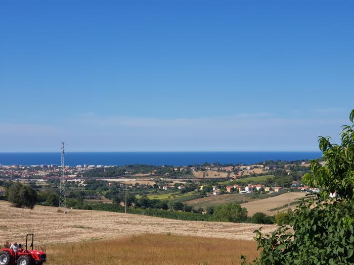in Vendita Senigallia in provincia di Ancona
